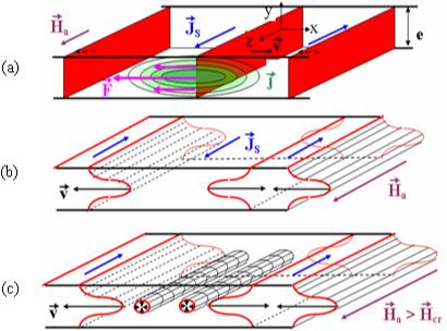 Figure 1 : déplacement des parois de Bloch sous l'effet d'un cha